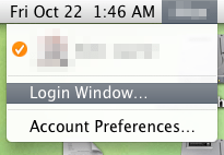 Access Login Window