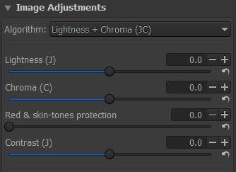 RawTherapee's Image Adjustments Panel