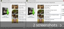 Screenshot collage for Free FLV Convert Wizard
