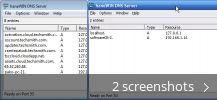 haneWIN DNS Server (free) download Windows version