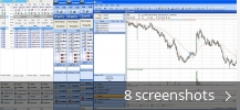 Screenshot collage for Investar