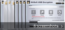 Screenshot collage for GiliSoft USB Stick Encryption