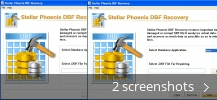 Screenshot collage for Stellar Phoenix DBF Recovery